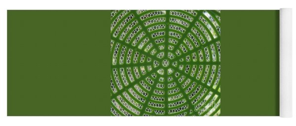 Rays And Circles Abstract 01 Yoga Mat