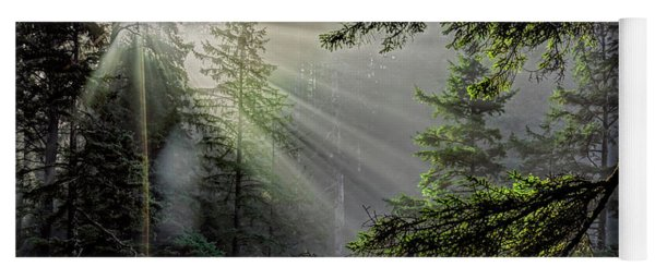 Morning Rays Through An Oregon Rain Forest Yoga Mat