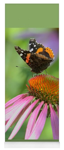 Red Admiral On Cone Flower Yoga Mat