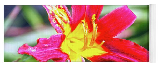Red And Yellow Orchid Yoga Mat
