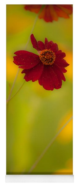 Red And Yellow Yoga Mat