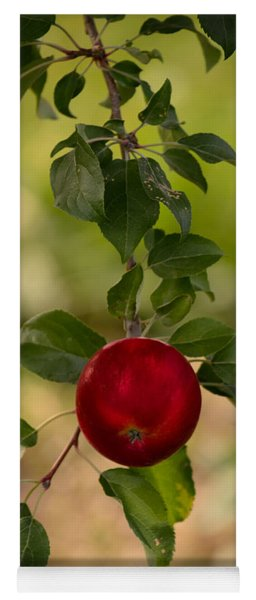 Red Apple Ready For Picking Yoga Mat