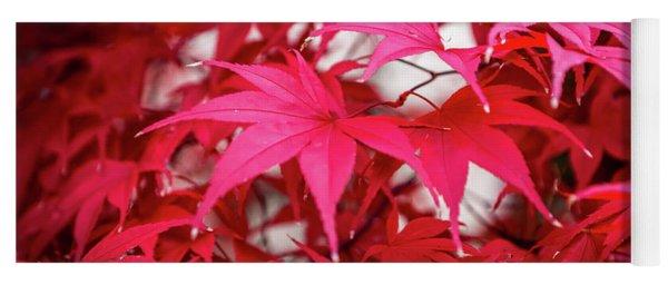 Red Autumn Yoga Mat