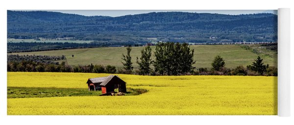 Red Barns In A Sea Of Canola Yoga Mat