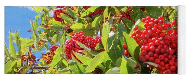 Red Berries, Blue Skies Yoga Mat
