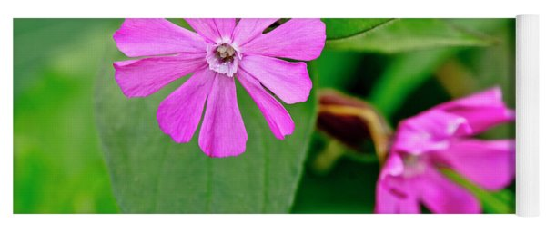 Red Campion - Fairy Flower. Yoga Mat