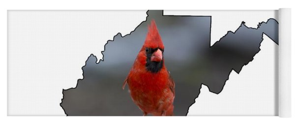 Red Cardinal Looking For Food Yoga Mat