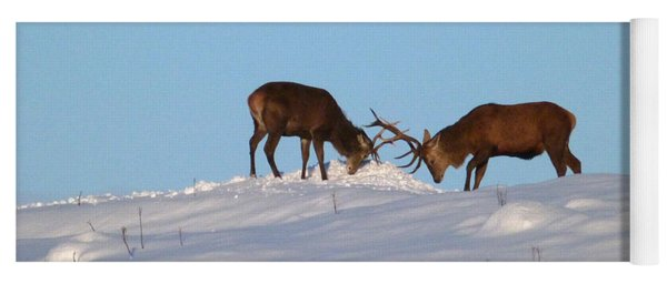 Red Deer Stags - Winter Sparring Yoga Mat