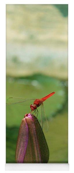 Red Dragonfly At Lady Buddha Yoga Mat