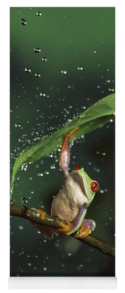 Red-eyed Tree Frog In The Rain Yoga Mat