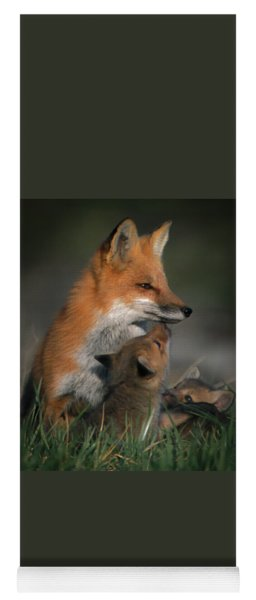 Red Fox Mother And Kits Yoga Mat