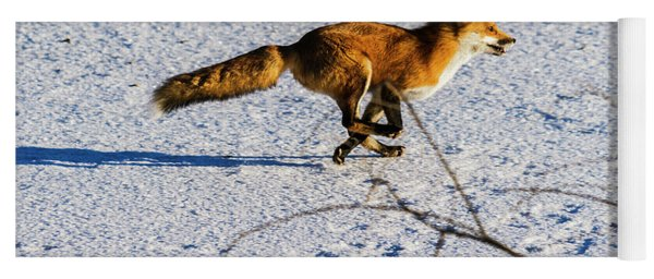 Red Fox On The Run Yoga Mat