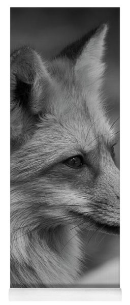 Red Fox Portrait In Black And White Yoga Mat