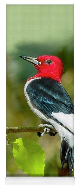 Red-headed Woodpecker Portrait Yoga Mat