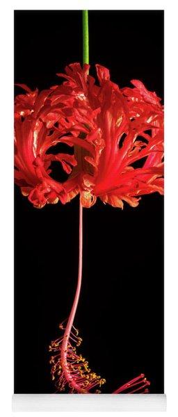 Red Hibiscus Schizopetalus On Black Yoga Mat