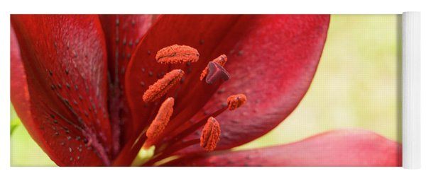 Red Lily For Wealth And Prosperity. Yoga Mat