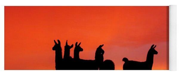 Red Llama Sunset 1 Yoga Mat