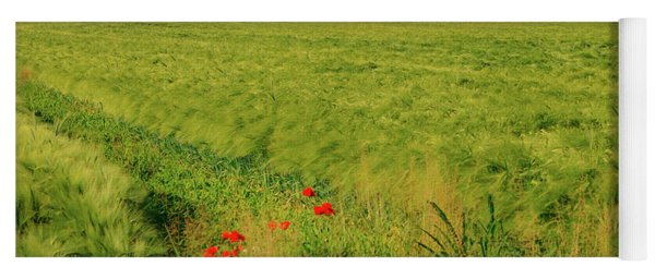 Red Poppies On A Green Wheat Field Yoga Mat