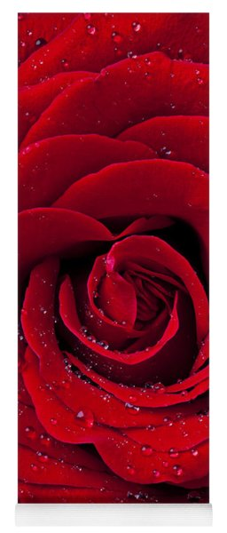 Red Rose With Dew Yoga Mat