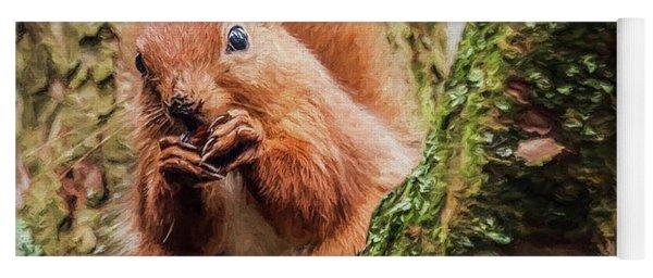 Red Squirrel, Feeding Yoga Mat