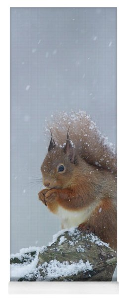 Red Squirrel In A Blizzard Yoga Mat