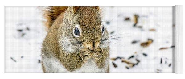 Red Squirrel Yoga Mat