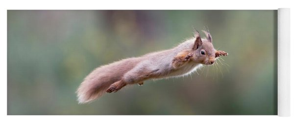 Red Squirrel Leaping Yoga Mat
