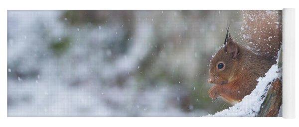 Red Squirrel On Snowy Stump Yoga Mat