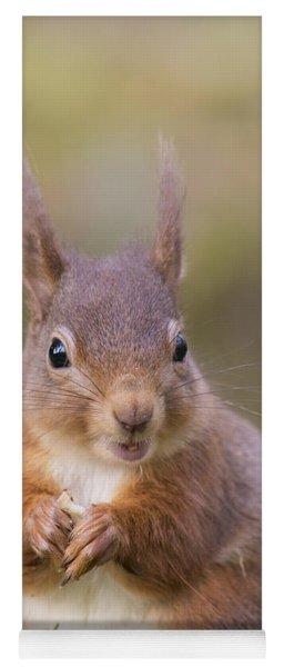 Red Squirrel - Scottish Highlands #18 Yoga Mat