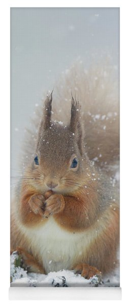 Red Squirrel With Snowflakes Yoga Mat