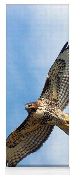 Red Tail Hawk Yoga Mat
