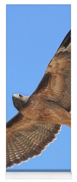 Red Tailed Hawk In Flight Yoga Mat