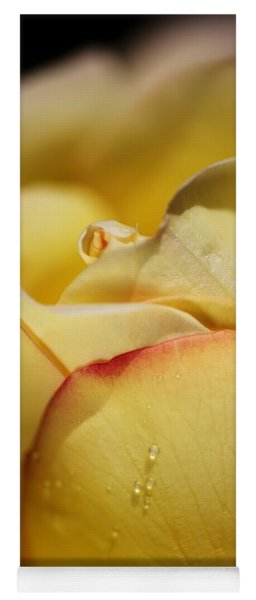 Red Tipped Yellow Rose Yoga Mat