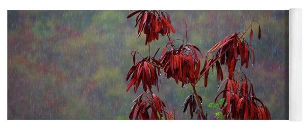 Red Tree In The Rain Yoga Mat