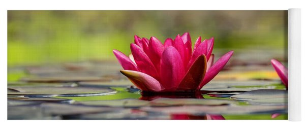 Red Water Lilies Yoga Mat