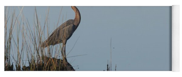 Reddish Egret And Reflection In The Morning Light Yoga Mat