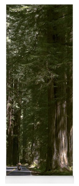 Redwood Highway Yoga Mat