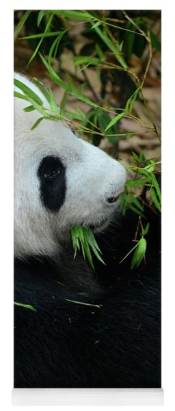 Relaxed Panda Bear Eats With Green Leaves In Mouth Yoga Mat