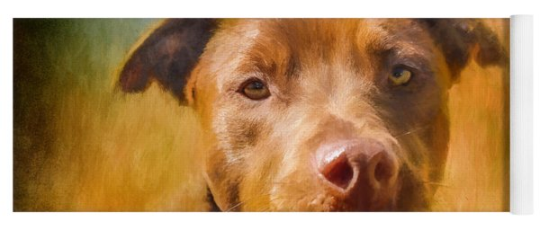 Rescued Chocolate Lab Portrait Yoga Mat