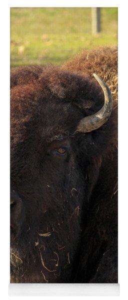 Resting Buffalo Yoga Mat