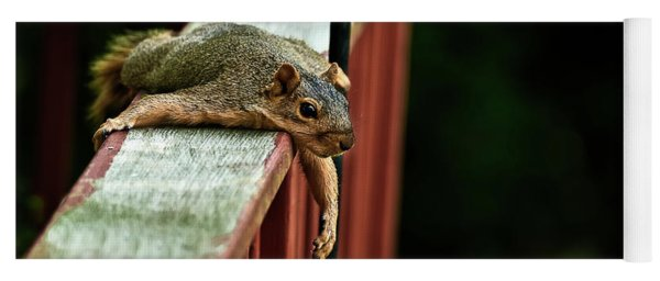 Resting Squirrel Yoga Mat