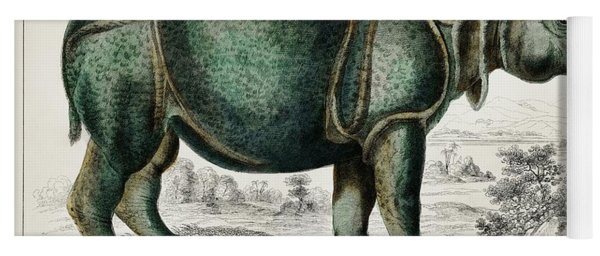 Rhinoceros From A History Of The Earth And Animated Nature Yoga Mat