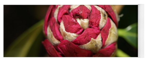 Rhododendron Bud Yoga Mat
