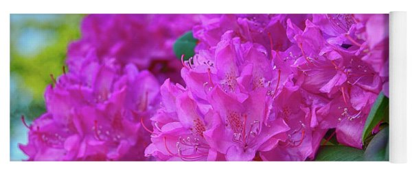 Rhododendron In Pink Yoga Mat