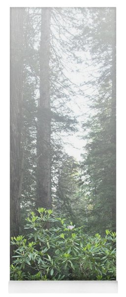 Rhododendrons In The Fog Yoga Mat