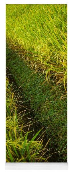 Rice Field Hiking Yoga Mat