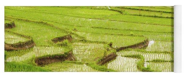 Ricefields In Bali 1 Yoga Mat