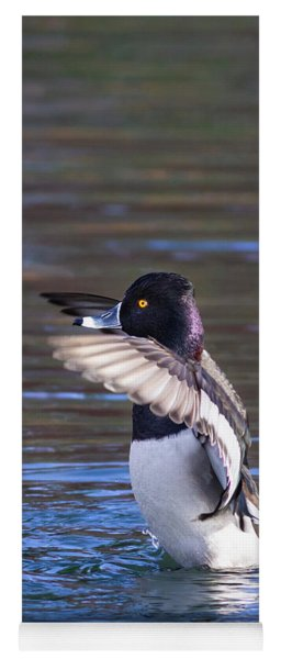 Ring-necked Duck Wings Up Yoga Mat