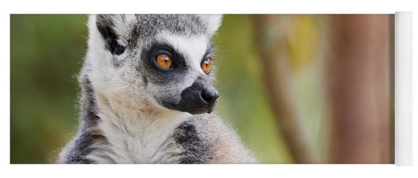 Ring-tailed Lemur Closeup Yoga Mat