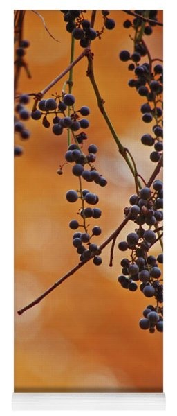 Ripe Wild Grapes  Yoga Mat